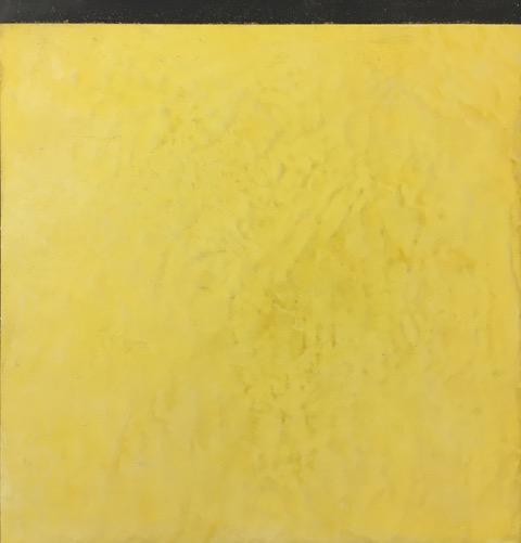 enduits-de-beton-cire-jaune